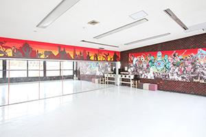DANCE STUDIO SHELTER