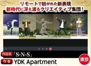 S-N-S / YDK Apartment